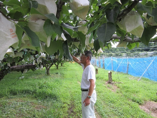 2014/8/18 梨畑と赤井さん